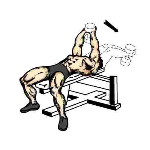 Senior Fitness Program... Deadlifts With Dumbbells